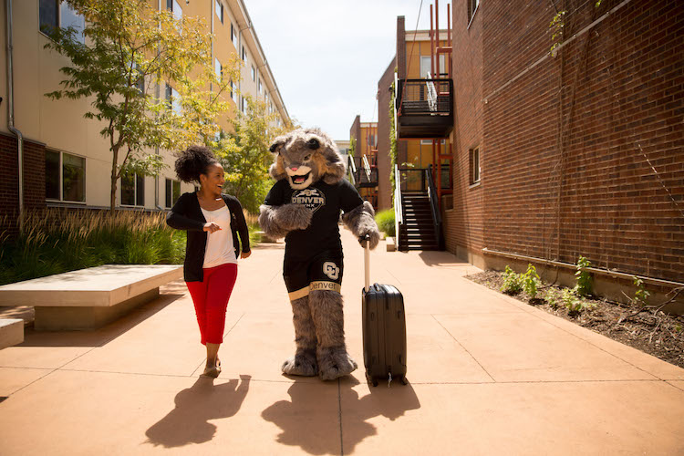 CU Denver student walking with Milo the Lynx